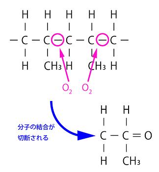 ポリプロピレン・ポリエチレン分子構造